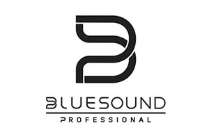 Bluesound Professional